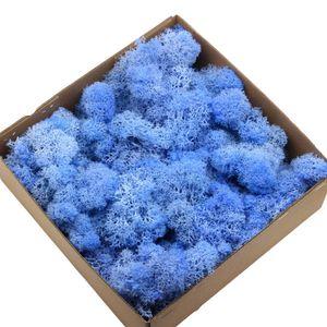 1 Box Ewiges Leben Getrocknet Moos Mini Landschaft Dekor DIY Blumen Handwerk Zubehoer Hellblau