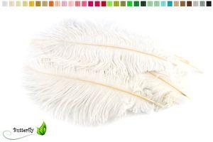 10 Straußenfedern ca. 15-20cm , Farbauswahl:weiß 029