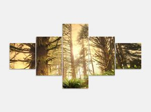 Leinwandbild 5 tlg. 200cmx100cm Dschungel Regenwald Wald Sonne Bilder Druck auf Leinwand Bild Kunstdruck mehrteilig Holz 9YA763, 5Tlg 200x100cm:5Tlg 200x100cm