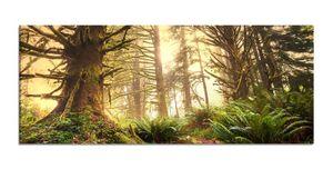 Leinwandbilder 1Tlg 100x40cm  Dschungel Regenwald Wald Sonne   Leinwandbild Kunstdruck Wand Bilder Vlies Wandbild Leinwand Bild Druck 9Z737, Leinwandbild Größe:100x40cm