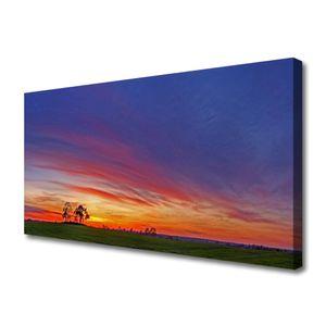 Tulup Leinwand-Bilder 100x50 Wandbild Canvas Kunstdruck Landschaft Feld Bäume Natur
