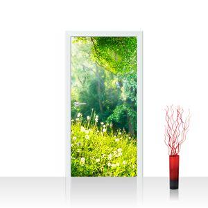 Tür Fototapete PREMIUM PLUS selbstklebend no. 30 - 100X211 cm Sunny Forest Wald Bäume Natur Baum grün