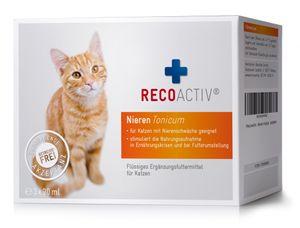 RECOACTIV® Nieren Tonicum für Katzen, 3 x 90 ml
