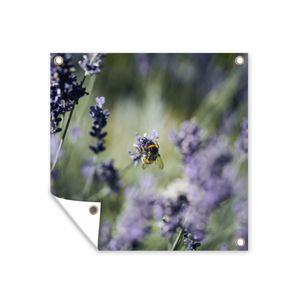 Gartenposter - Nahaufnahme einer Hummel, die Nektar aus Lavendel trinkt - 100x100 cm