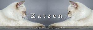 Literarischer Tischkalender Katzen 2022
