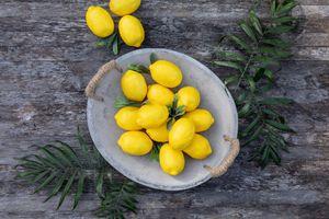 Deko-Zitrone,8er Set,Obst Deko,täuschend echt gearbeitet,dekorativer Hingucker