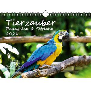 Tierzauber Papageien und Sittiche DIN A4 Kalender für 2021 - Seelenzauber