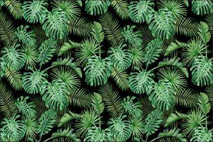 Muralo Fototapete 450 x 300 cm Vlies Tapete Wandtapeten moderne Wandbilder XXL Dschungel Monstera Palmen
