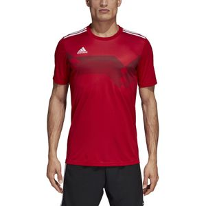 adidas CAMPEON 19 Herren Trikot T-Shirt Rot, Größe:L