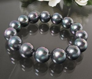 Armband Muschelkern Perlen Tahitigrau Perlenarmband A439