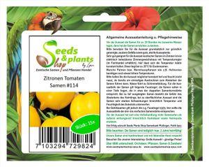 15x Zitronen Tomaten Gemüse Pflanzen - Samen #114