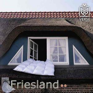 Friesland 135x200cm Ganzjahresdecke 900g friesische Daunen und Federn
