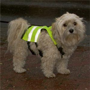 Hunde-Sicherheitsweste, 24Cm Für Rückenlänge Ca. 34Cm