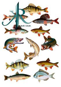 Fishing, Angler, Fisch, 12 Stück,Tortenaufleger,Geburtstag,Tortendeko,