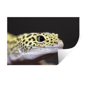 Wandaufkleber - Gecko mit Leopardenmuster - 60x40 cm - Repositionierbar