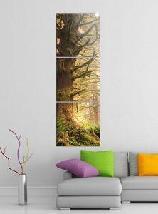 Leinwandbild 3tlg Dschungel Regenwald Wald Sonne Bilder Druck auf Leinwand Vertikal Bild Kunstdruck mehrteilig Holz 9YA3949, Vertikal Größe:Gesamt  30x90cm
