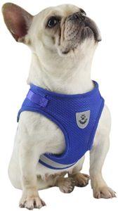 Hundegeschirr und Leinen Set für Hunde, Weich Mesh Gepolstert Geschirr für Welpen und Katzen, Reflektierende Verstellbare Atmungsaktive Brustgeschirr für Gehen, Laufen, Training, Blau L (Brust 40-44 cm)