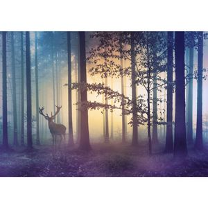 Natur Wald 9338a RUNA Natur Wald VLIES FOTOTAPETE XXL DEKORATION TAPETE− WANDDEKO 396 x 280 cm