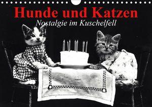 Calvendo Wandkalender Hunde und Katzen - Nostalgie im Kuschelfell (Wandkalender 2021 DIN A4 quer) 2021 DIN A4
