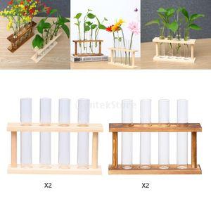 Röhren Glashalter Pflanze Pothos Wandvase stehen