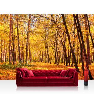 Vlies Fototapete no. 0084 - 300X210 cm - Autumn Forest Wald Tapete Herbstblätter Wald Bäume Baum Forest Herbst orange liwwing (R)