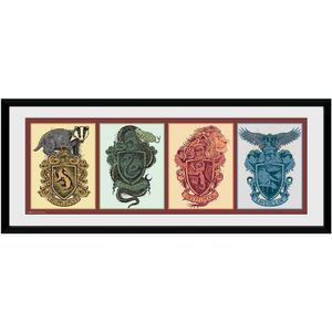 Harry Potter - Gerahmtes Poster, Hogwarts Häuser TA6470 (Einheitsgröße) (Bunt)