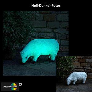 ColuxGlow Nachtleuchtfarbe Leuchtfarbe -  250 ml - Weiß Glow-in-the-Dark Farbe, Dispersionsfarbe, Nachleuchtfarbe