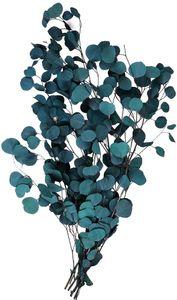 Eukalyptus Trockenblumen Echt, Eukalyptus Getrocknet Blumen Trockenblumenstrauß Hochwertige Reine Natürliche Pflanze Rundes Blatt Ewiges Leben und Frisch Erhalten,Trockenblumen Deko für Party