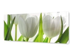 Glasbild Wandbild GLX12577412716 Tulpen Pflanze 125 x 50cm