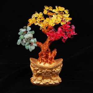 1 Stück Yuan Bao Bonsai Stil Reichtum Glück Baum , Farbe Drei Farben