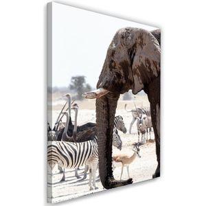 Leinwandbild, Tiere in der Savanne - Elefanten Zebras Strauße Antilopen (P_1758), 70x100 cm