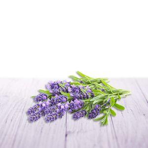 Air Wick Aroma-Öl Diffuser Entspannender Lavendel Raumduft Duft Lufterfrischer