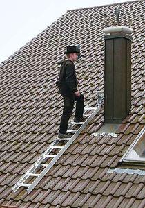 Günzburger Steigtechnik Dachleiter Alu Natur 15 Sprossen