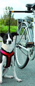 Pawise Hands Free Doggy Bike Exerciser Leash