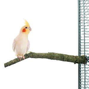Natur Kork Vogel-Sitzstange - Small