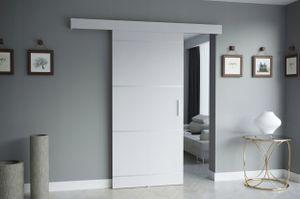 RAJMI IV Schiebetür Türblatt Komplett-Set Weiß silberne Hochglanzstreifen 80 cm + Selbstschließmechanismus
