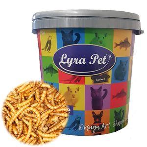 5 kg Lyra Pet® Mehlwürmer in 30 L Tonne