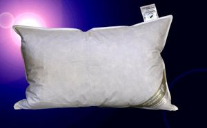 Canada Kopfkissen Polster 50x75 cm Daunen-Federkissen 30% Daunenanteil 600g