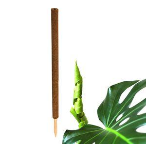 1x Kokos Pflanzstab 110 cm Rankstab Rankhilfe