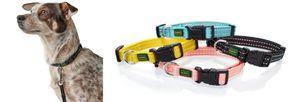 Hunter Halsband Tripoli Vario Basic versch. Größen und Farben, Größe:XS-S, Farbe:schwarz