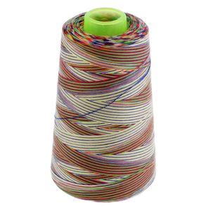 1 Spule Rainbow Polyester Nähmaschine Nähgarn Allzweck Typ 3 Stickmaschine wie beschrieben