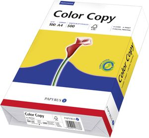 Papyrus Kopier- und Mehrzweckpapier - DIN A4 - 210 mm x 297 mm - 100 g/m² Grammage - 100er Blatt - Hochweiß