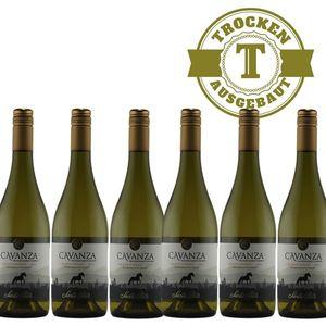 Weißwein Chile Chardonnay Aconcagua Valley trocken (6x0,75l)