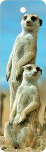 Lesezeichen Erdmännchen,  Buchzeichen Bücher Buch Tiere