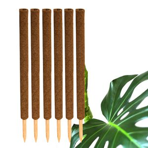 6x Kokos Pflanzstab 80cm Rankstab Kokosfaserstab Kokosstab verlängerbar