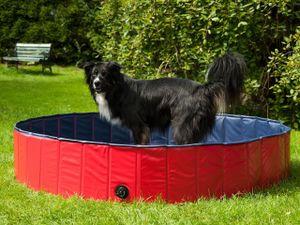 Hundepool, Planschbecken für Tiere XL