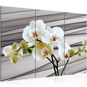 Blumen Orchidee BILD 120x80 cm − FOTOGRAFIE AUF VLIES LEINWANDBILD XXL DEKORATION WANDBILDER MODERN KUNSTDRUCK MEHRTEILIG 202031b