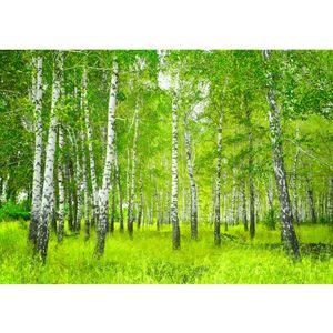 Fototapete Sunny Birch Forest Wald Tapete Birkenwald Bäume Wald Sonne Birke Birken Gras Natur Baum grün   no. 112, Größe:400x280 cm, Material:Fototapete Vlies - PREMIUM PLUS