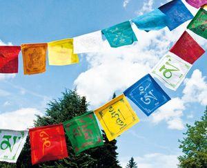 Tibetische Gebetsfahnen 8 Glückssymbole aus Baumwolle 0,8 m 10 bunte Fahnen à 8x10cm
