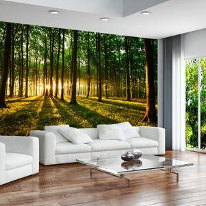 Vlies Tapete  Top  Fototapete  Wandbilder XXL  400x280 cm  WALD SONNENSCHEIN NATUR BAUM DESIGN c-B-0027-a-b